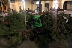 Després de l'assemblea del 3 de desembre, portem branques a la plaça de la Virreina.