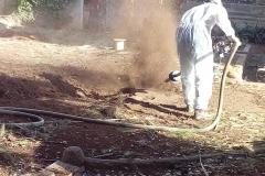 Els operaris, en ple procés de fer les cales de les arrels.