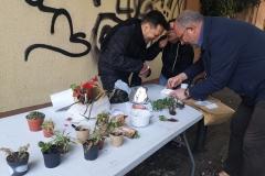 Intercanvi de plantes a la festa de la primavera del 31 de març.