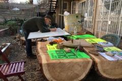 Treballant concentrat sobre la taula de cedre.