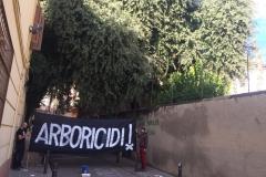 Ens hi cabrà la pancarta, pels carrers estrets de Gràcia?